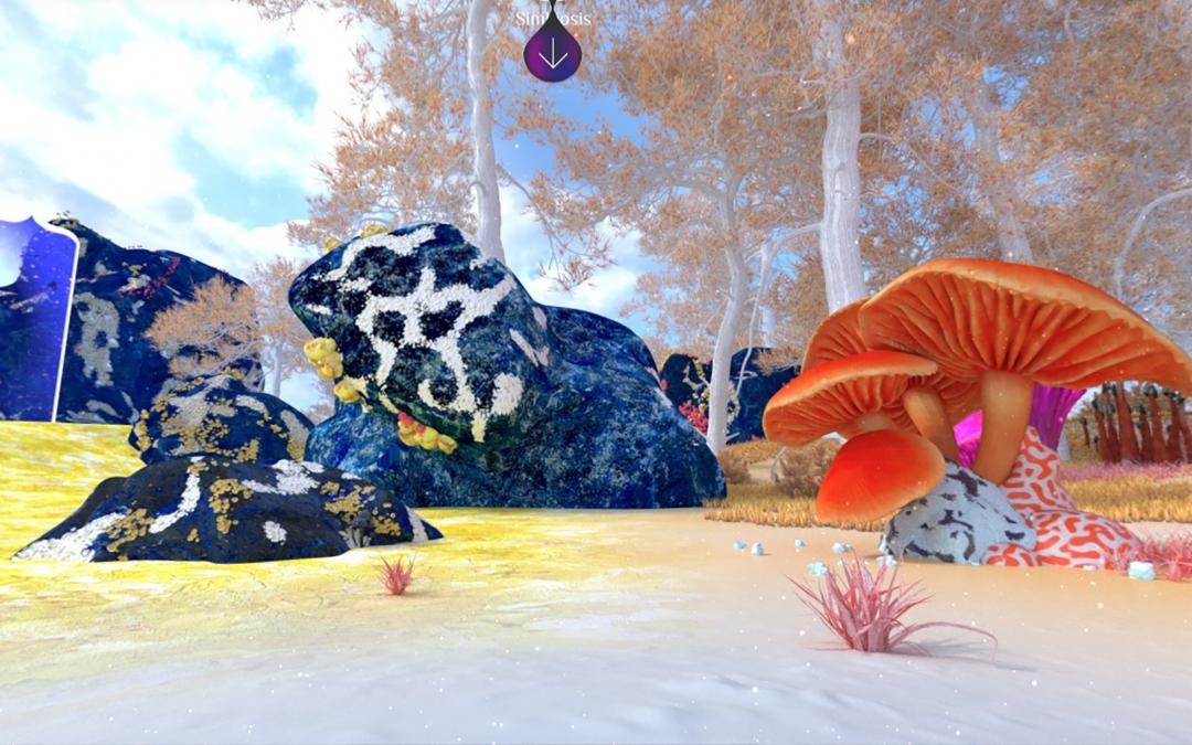 """Museo del Hongo invita a descubrir el Reino Fungi en la nueva experiencia virtual """"GIRA"""""""